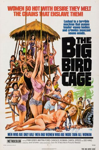 THE BIG BIRD CAGE One Sheet Poster