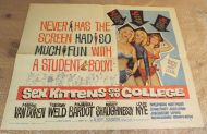 SEX KITTEN GO TO COLLEGE Half Sheet Poster